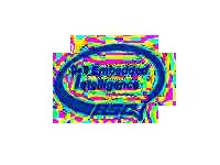 Logo_BSC